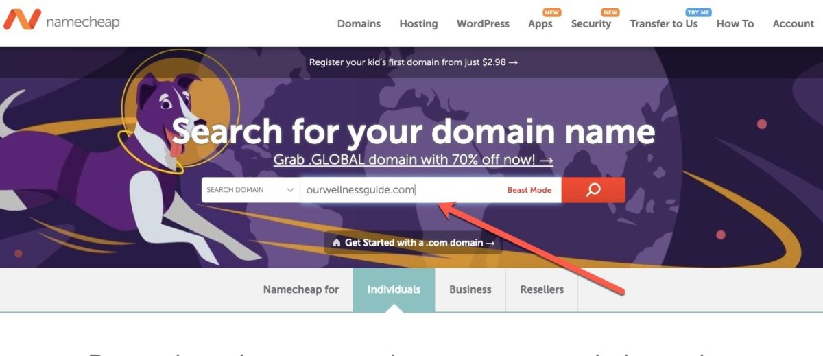 register domain on namecheap